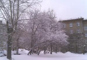 Зимнее фото ZTE v880E